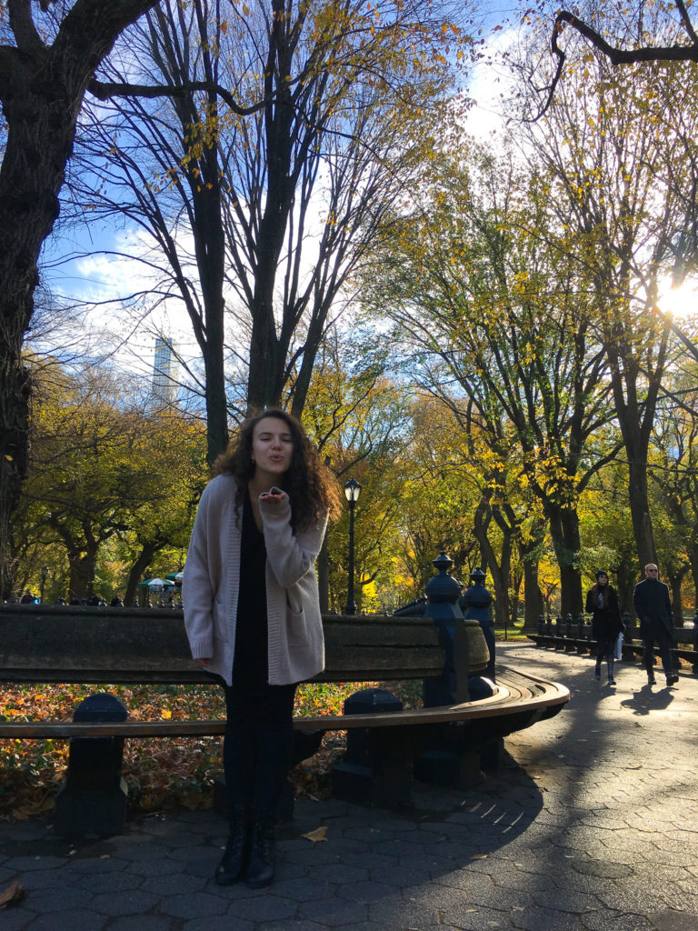 There's so much to do in New York City in the fall! Check out my Ultimate Autumn Bucket List for ideas on fall activities around NYC!