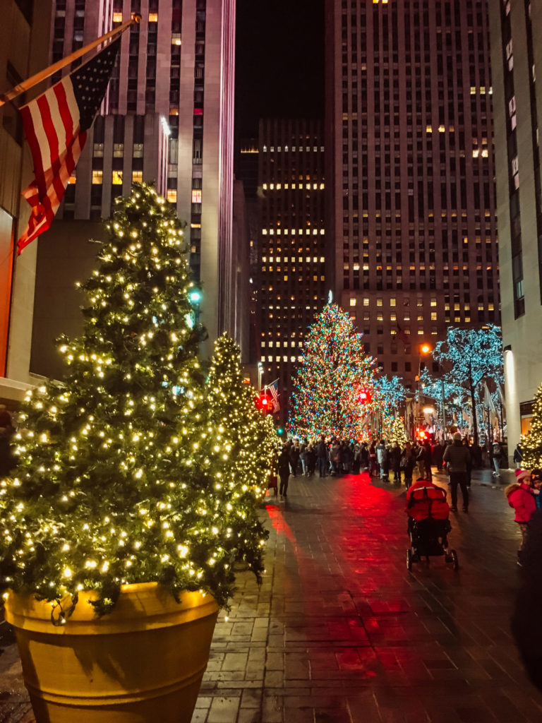 There's something extraordinary about taking a holiday tour of New York City. Check out this round-up of the top ten Christmas tours in NYC!