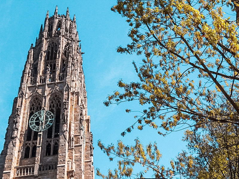 Looking for things to do in New Haven, Connecticut? If you're planning to visit this historic city or one of its many colleges, here's your 3-day itinerary!