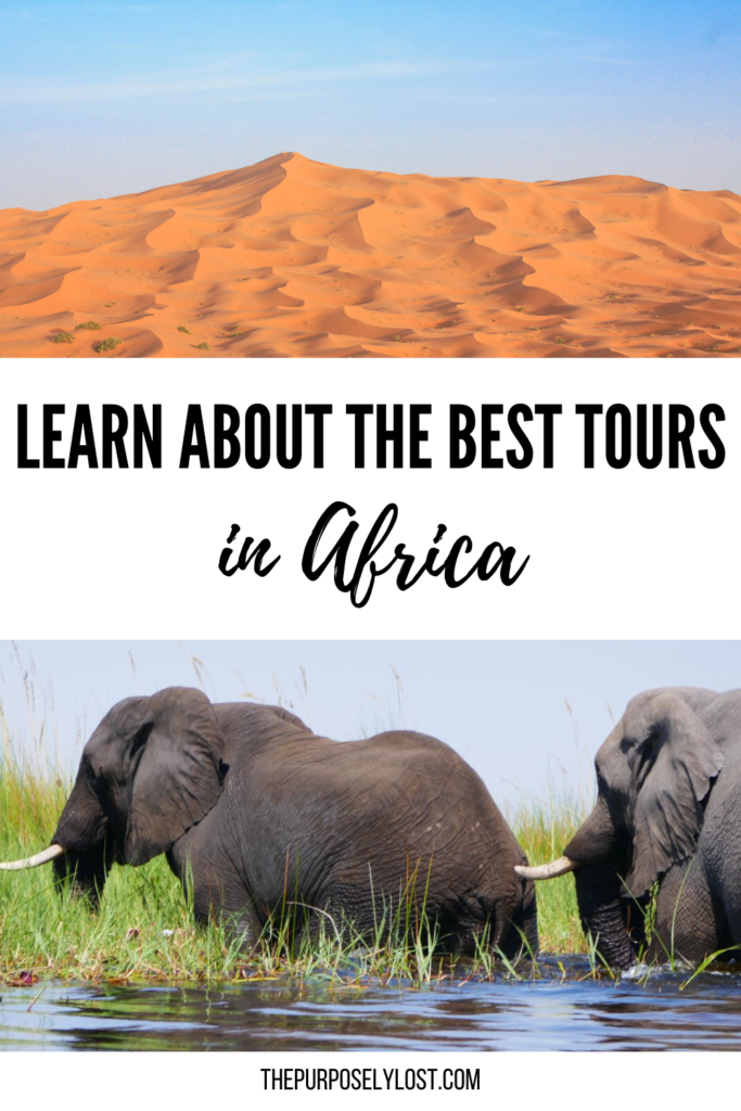 From snorkeling with seals to safari on the water, find these incredible experiences and more on this list of the top tours in Africa.