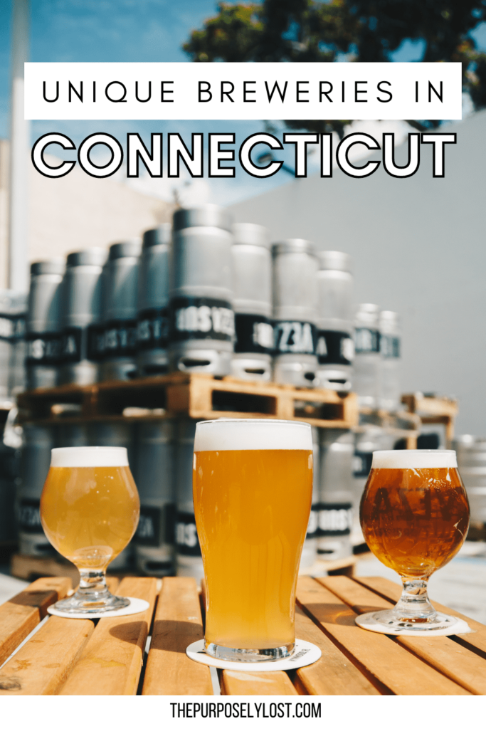 If you're looking for a great day or night out with friends, you should try visiting one of these best breweries in Connecticut!