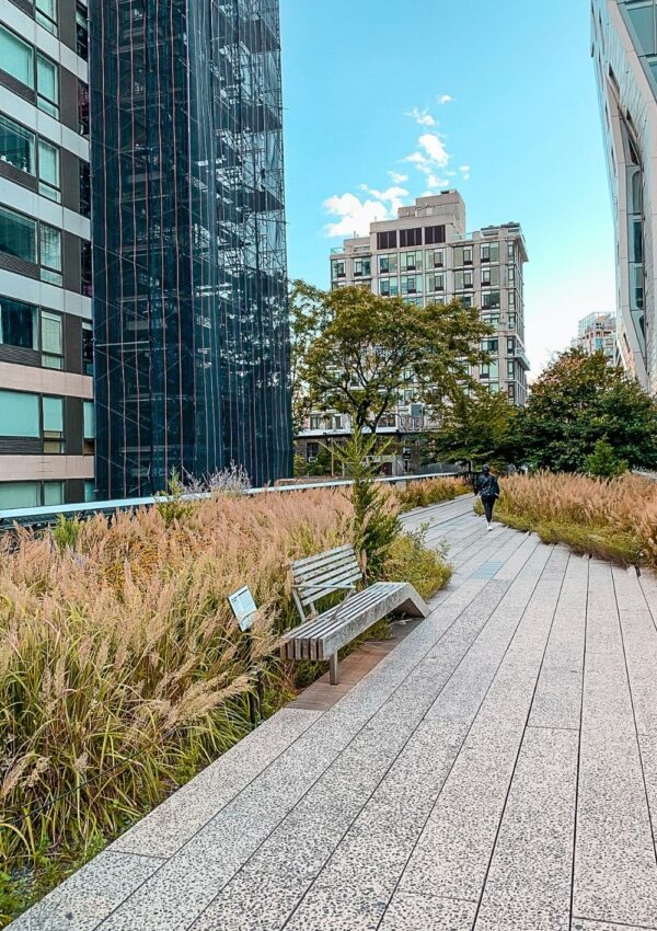 The High Line in Fall - If you're visiting New York City in the fall, you need to take advantage of the season and enjoy one of the many fall foliage tours from New York City!